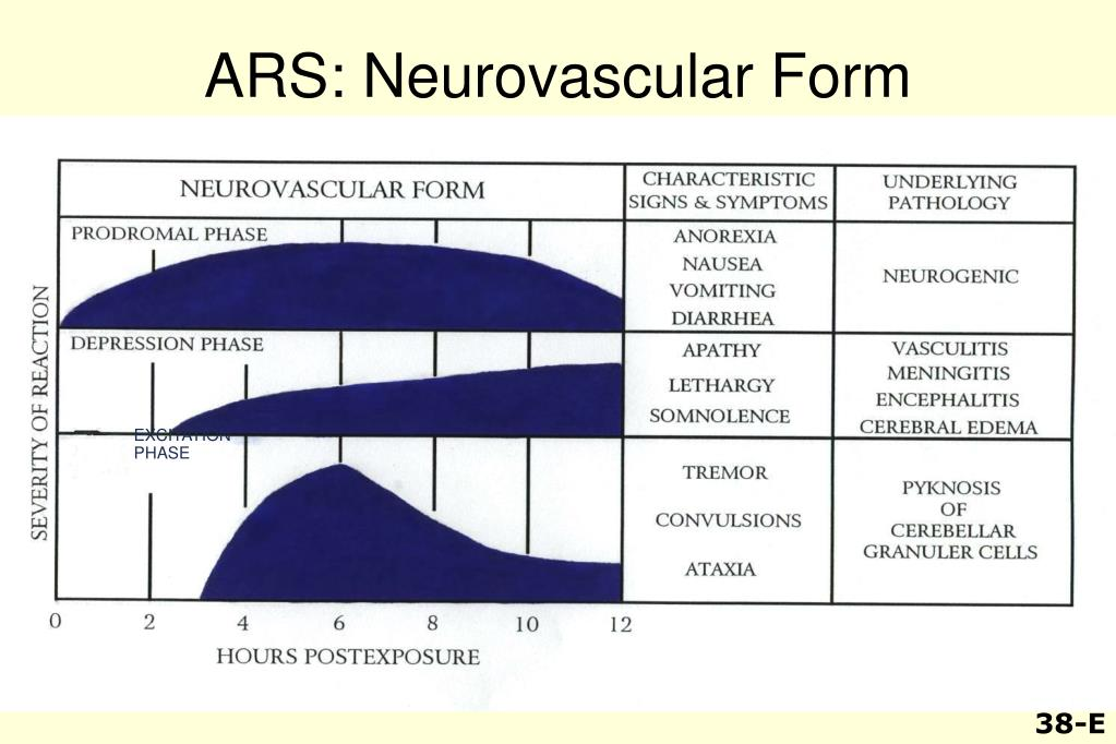ARS: Neurovascular Form