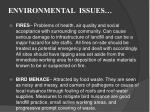 environmental issues2