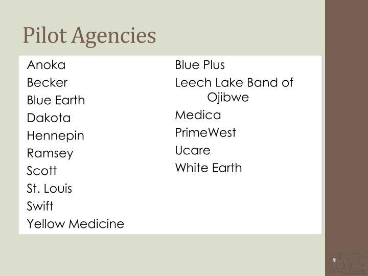 Pilot Agencies