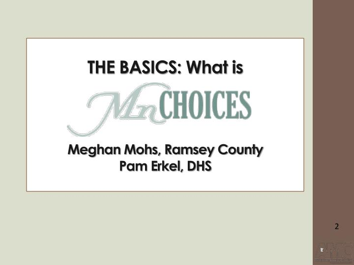 The basics what is meghan mohs ramsey county pam erkel dhs