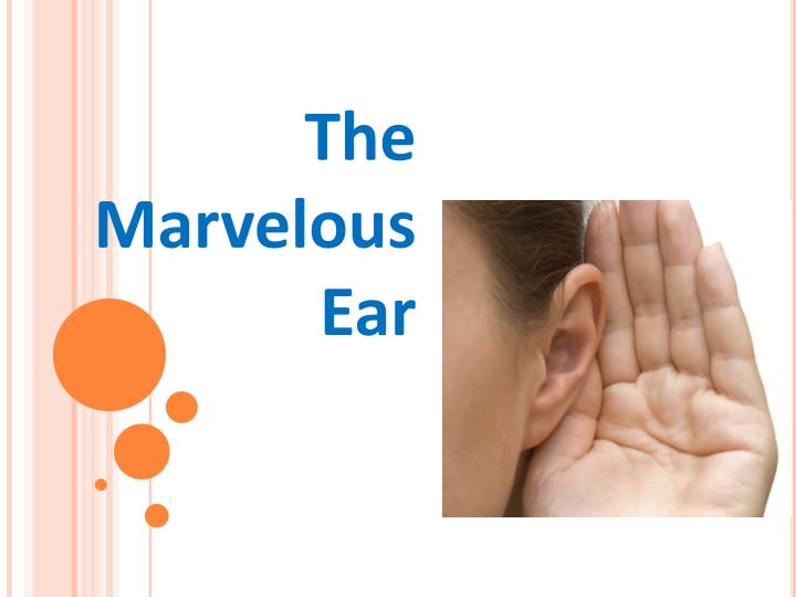 The marvelous ear