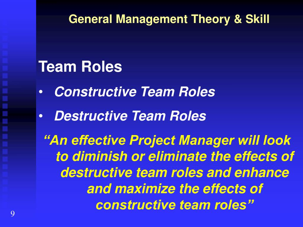 project management theory