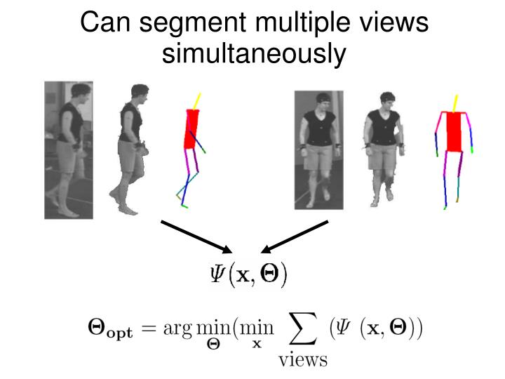 Can segment multiple views simultaneously