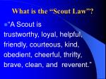 what is the scout law