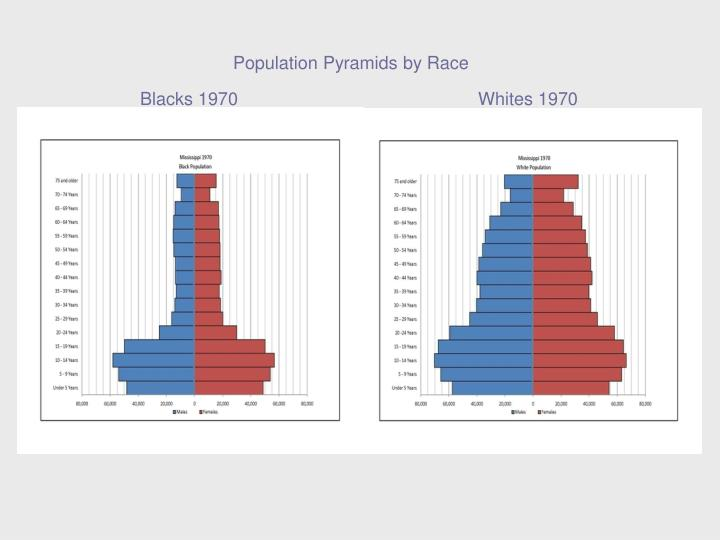 Population Pyramids by Race