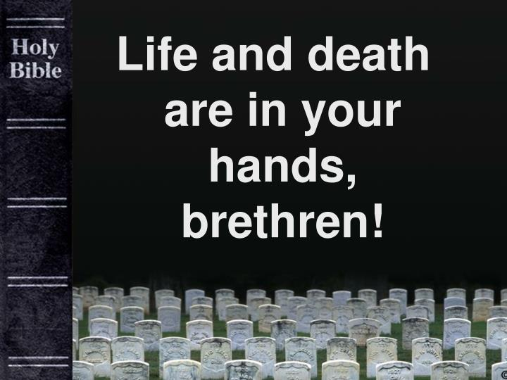 Life and death are in your hands, brethren!