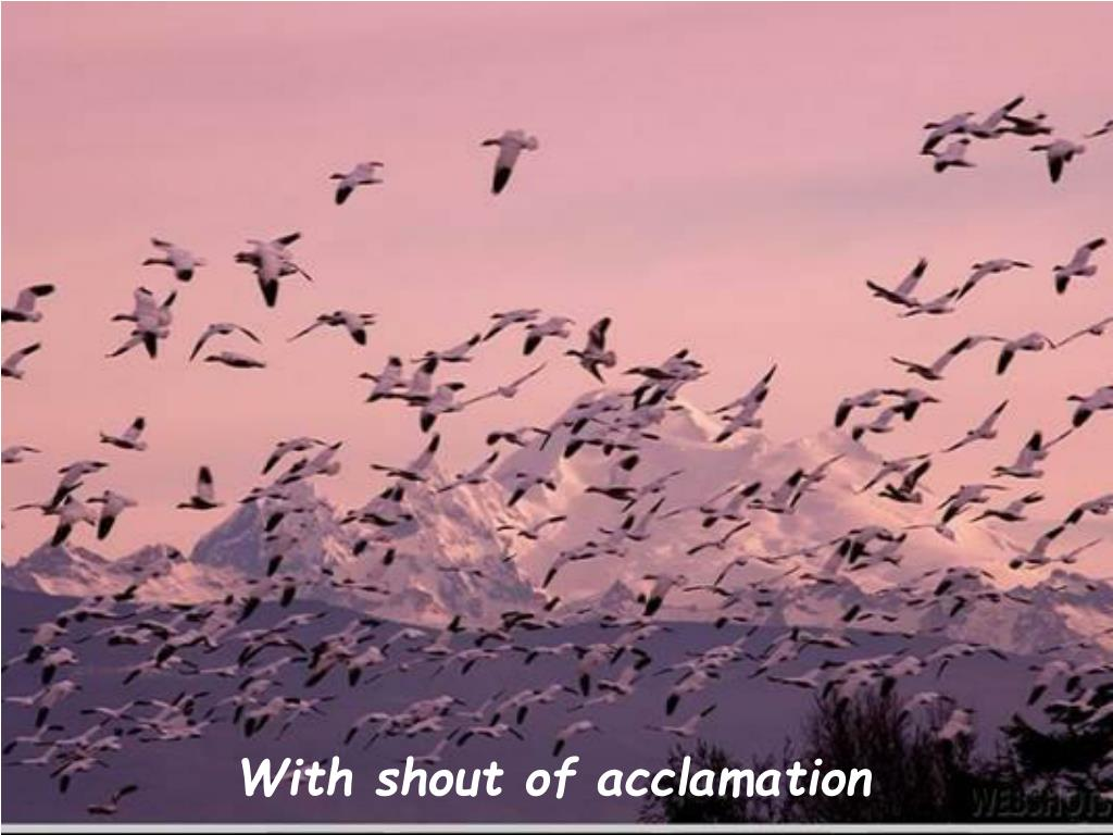 With shout of acclamation