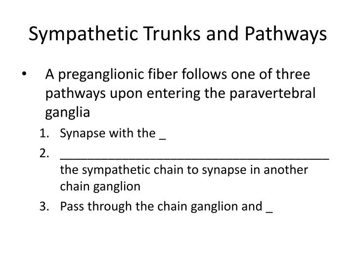 Sympathetic Trunks and Pathways