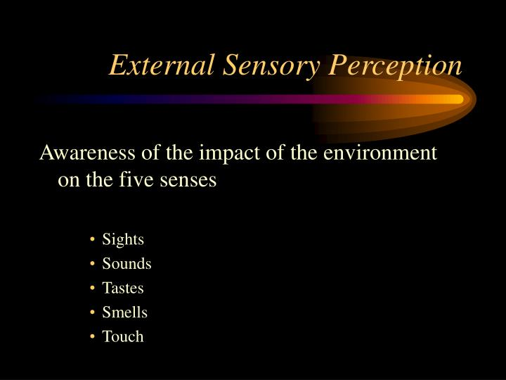 External Sensory Perception