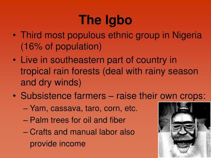 The Igbo