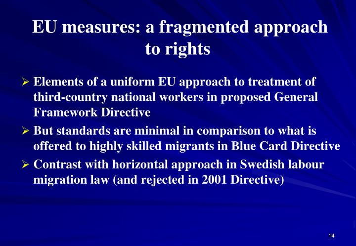 EU measures: a fragmented approach to rights