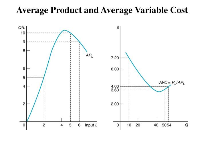 Average Product and Average Variable Cost