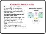 essential amino acids