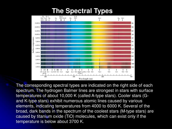 The Spectral Types