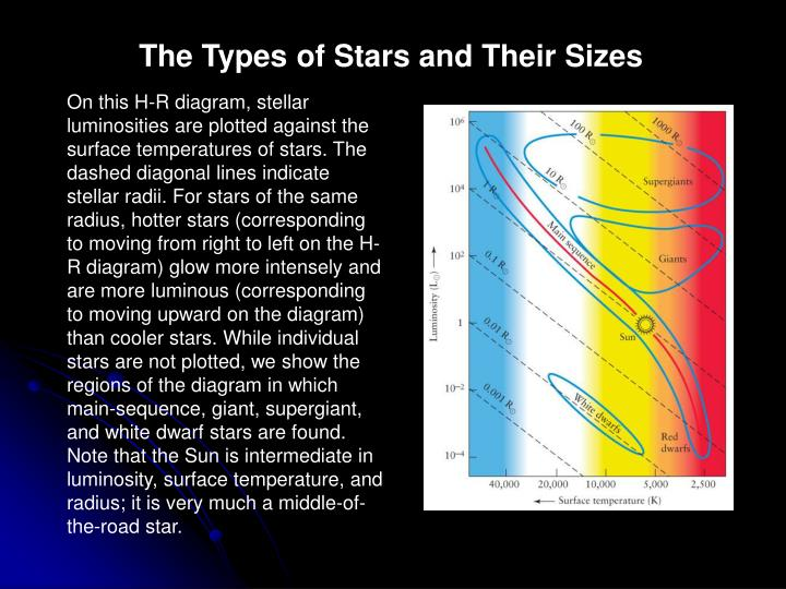 The Types of Stars and Their Sizes
