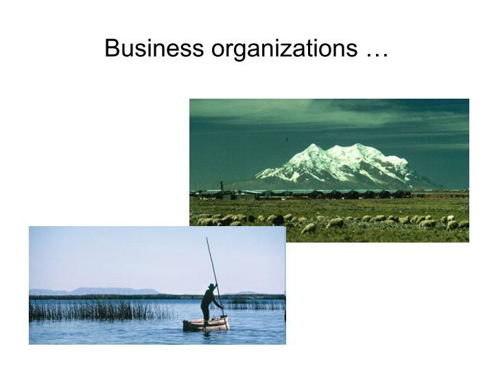 Business organizations …