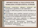 opportunities challenges for mobilizing international support