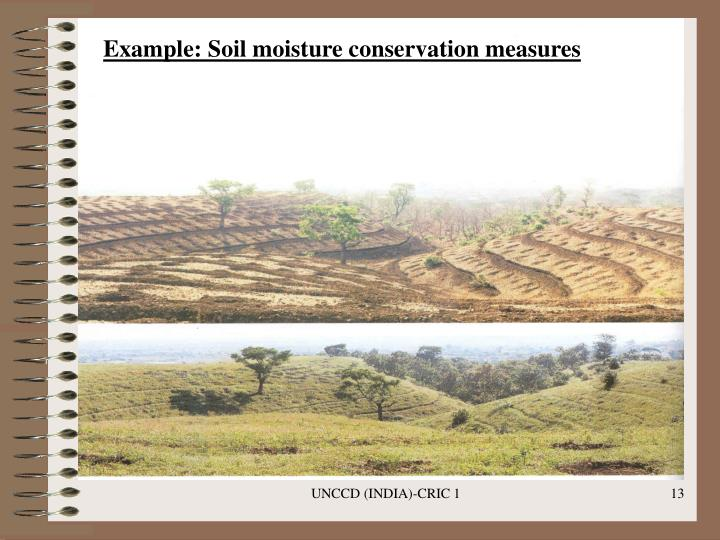 Example: Soil moisture conservation measures