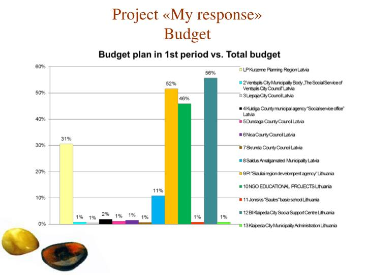Project my response budget