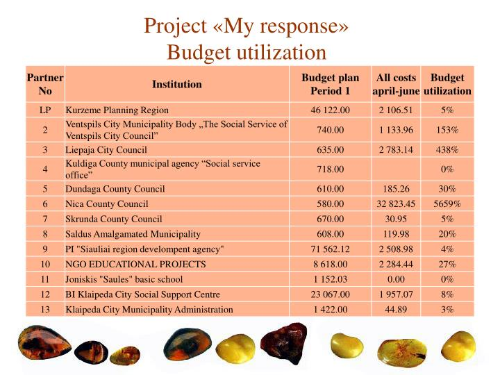 Project my response budget utilization