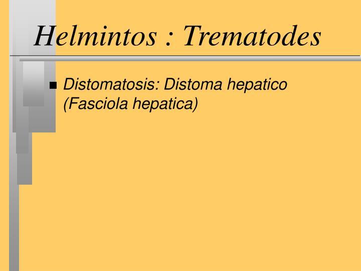 Helmintos : Trematodes