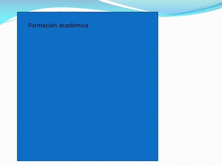 Formación académica