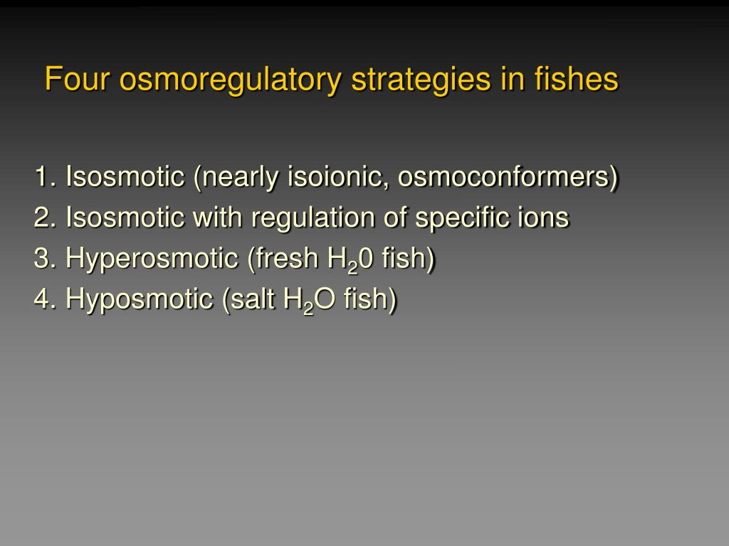 Four osmoregulatory strategies in fishes