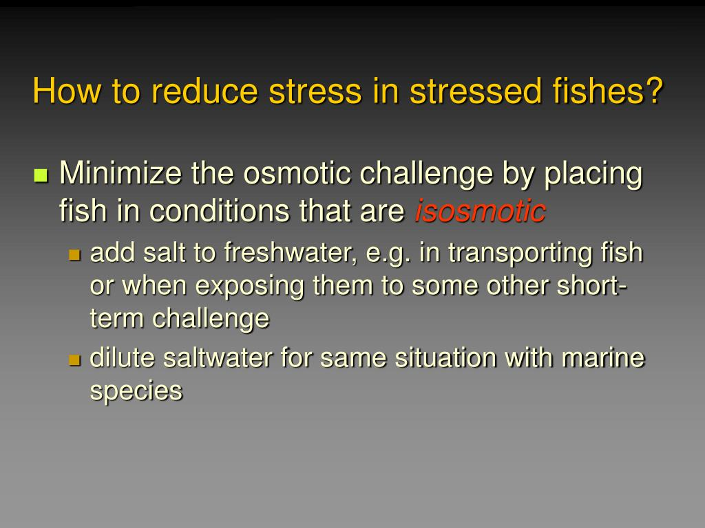 How to reduce stress in stressed fishes?