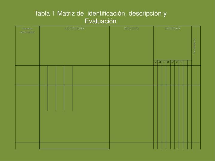Tabla 1 Matriz de  identificación, descripción y  Evaluación