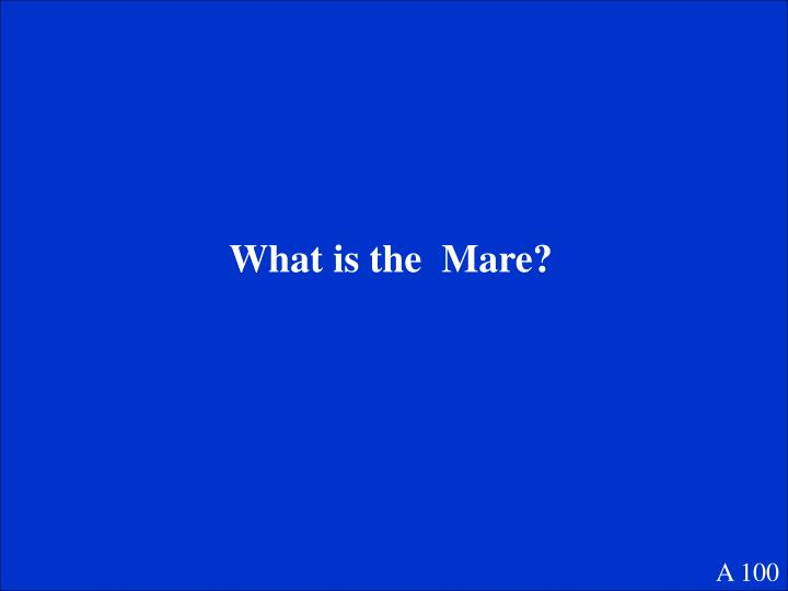 What is the  Mare?