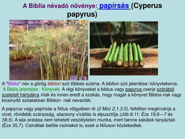 A Biblia névadó növénye: