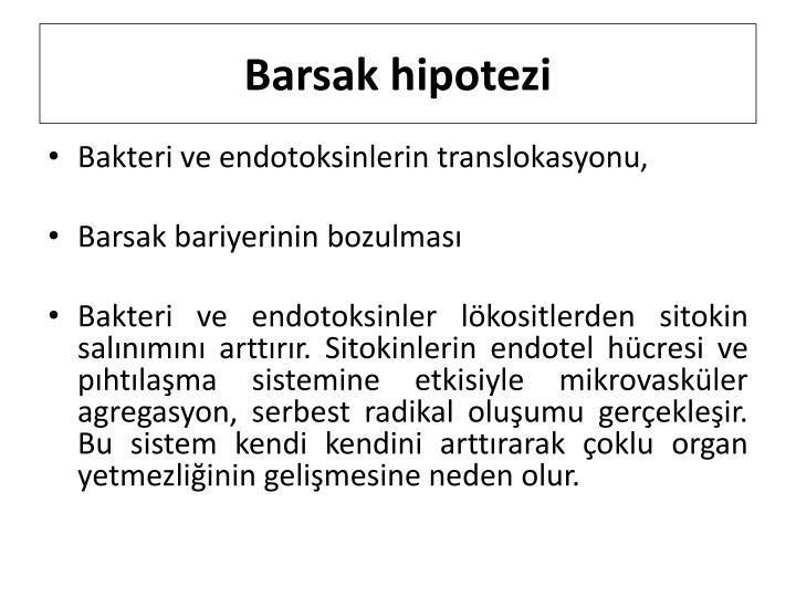 Barsak hipotezi