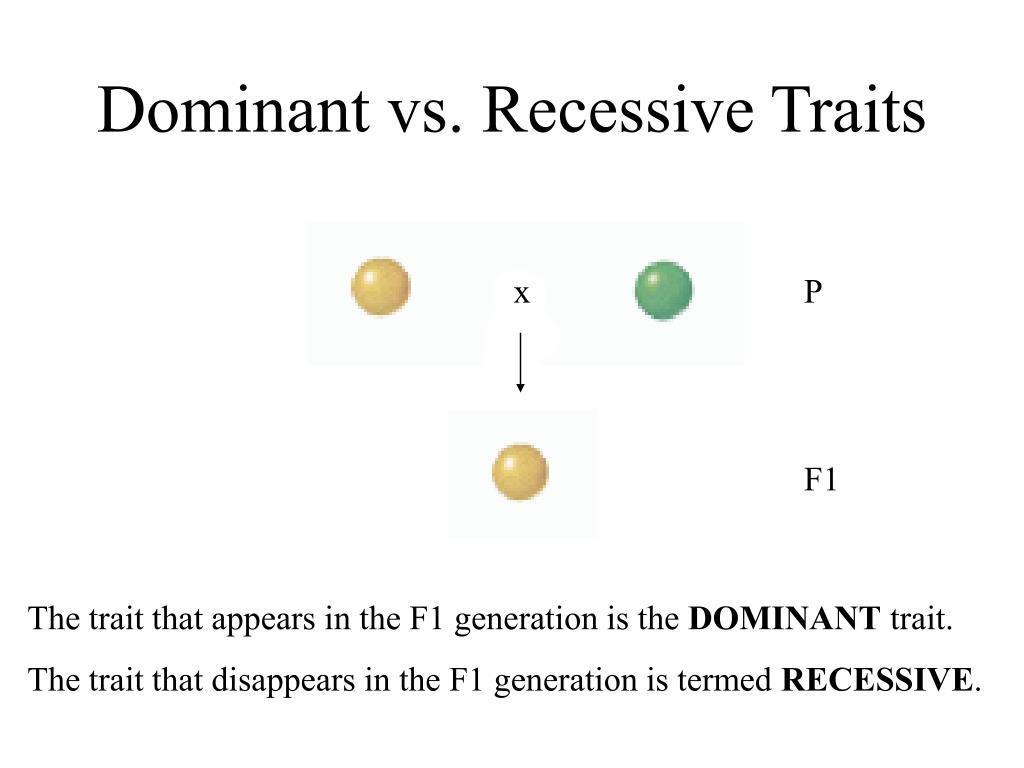 Dominant vs. Recessive Traits