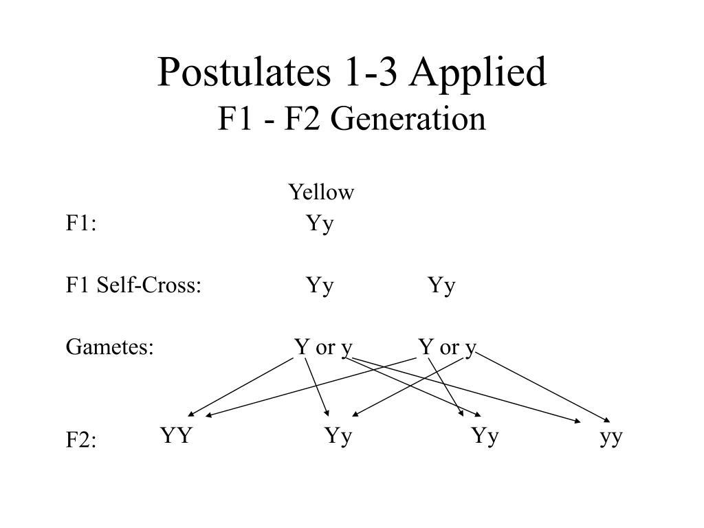 Postulates 1-3 Applied