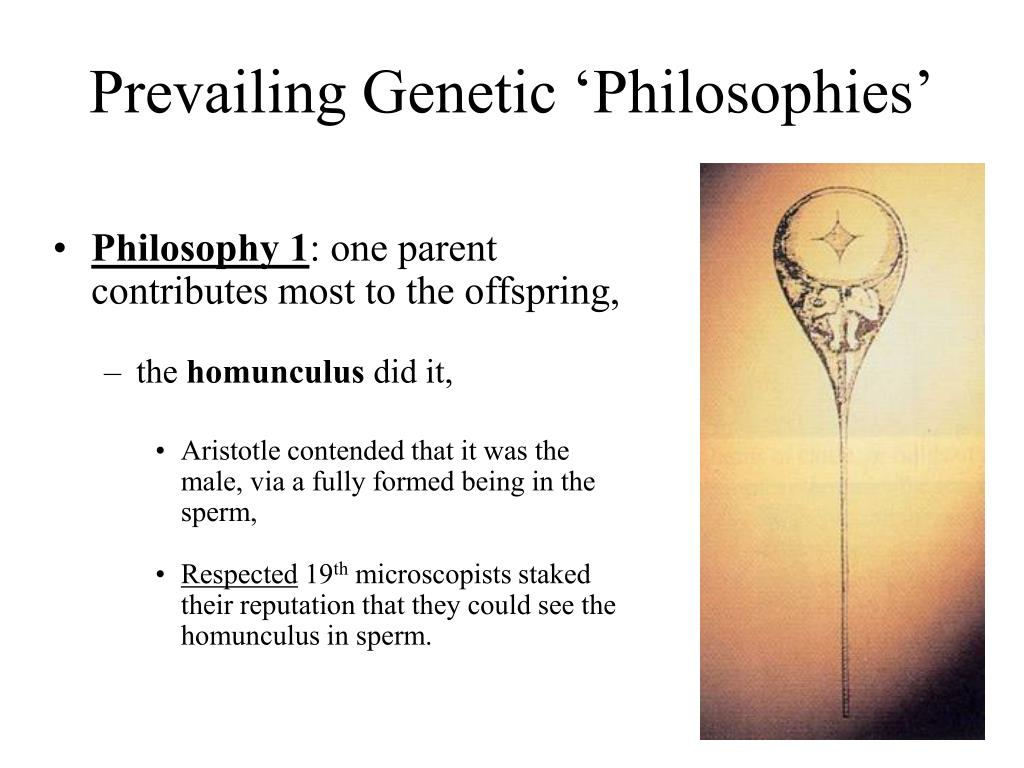 Prevailing Genetic 'Philosophies'