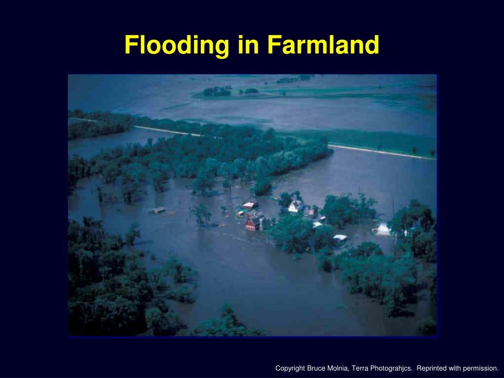 Flooding in Farmland