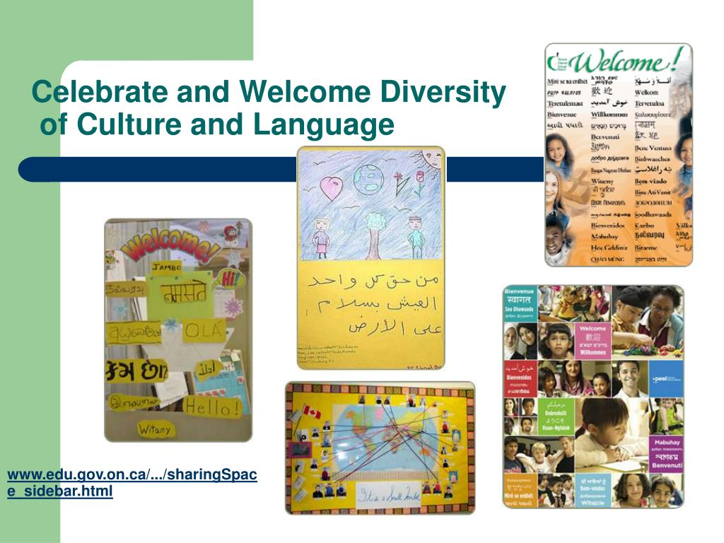 Celebrate and Welcome Diversity