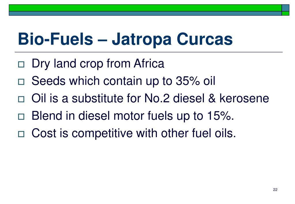 Bio-Fuels – Jatropa Curcas