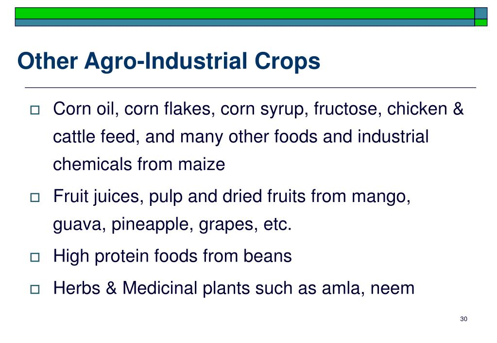 Other Agro-Industrial Crops