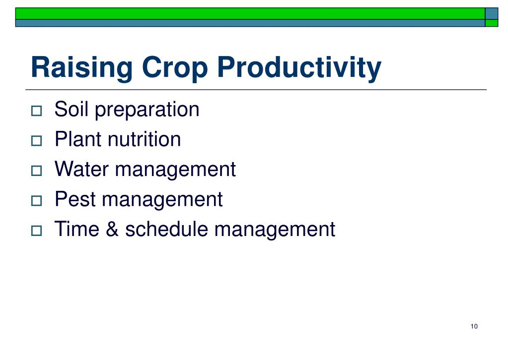 Raising Crop Productivity