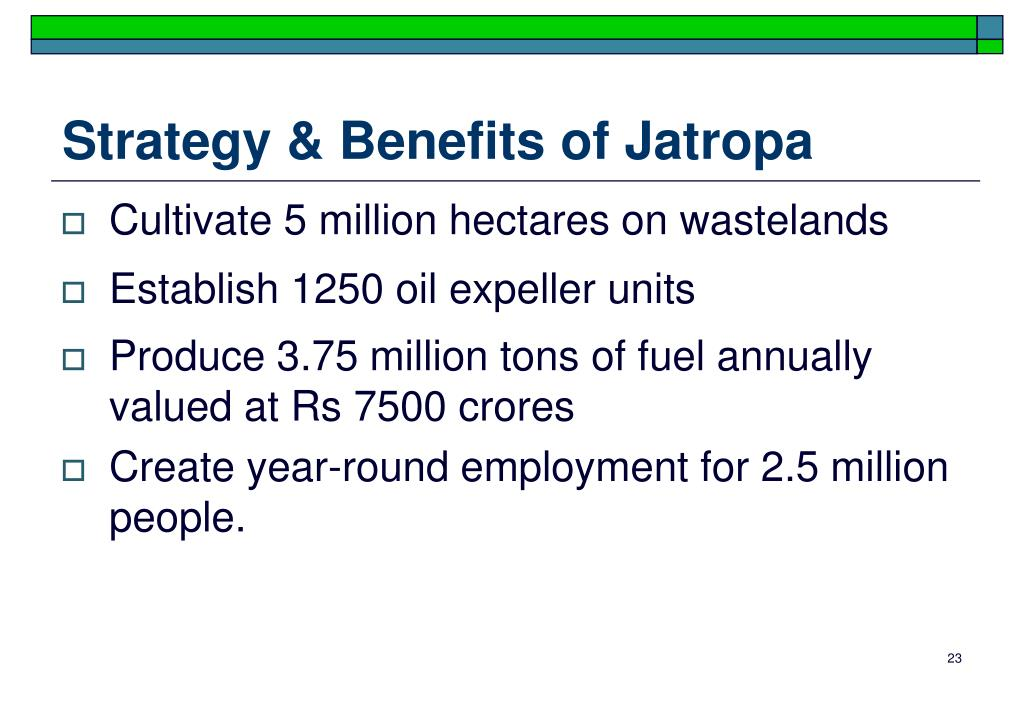 Strategy & Benefits of Jatropa