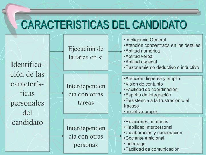 CARACTERISTICAS DEL CANDIDATO