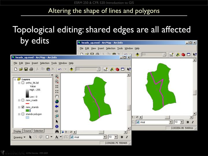 Altering the shape of lines and polygons