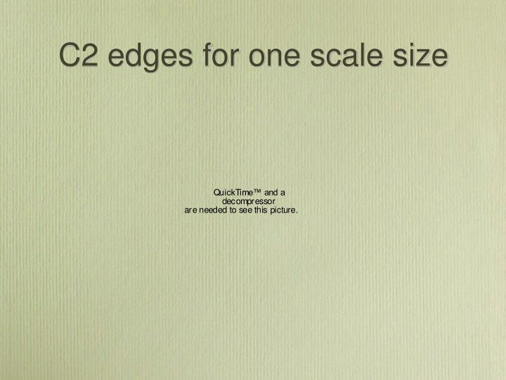 C2 edges for one scale size