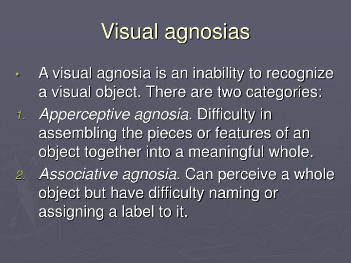 Visual agnosias