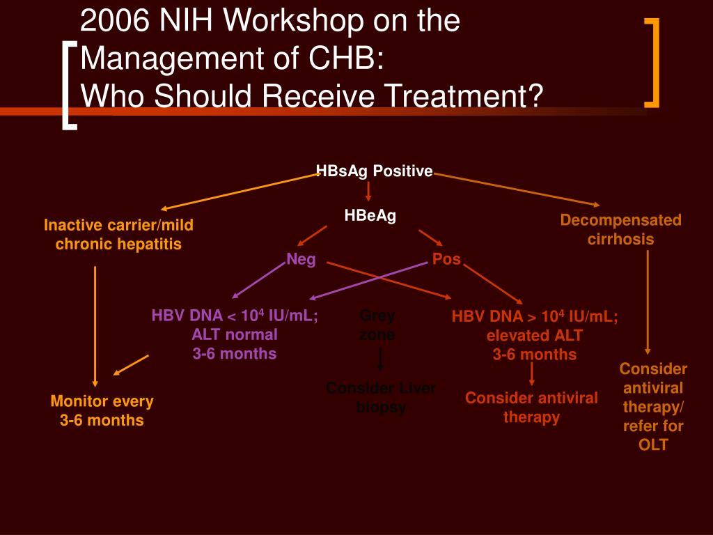 2006 NIH Workshop on the Management of CHB: