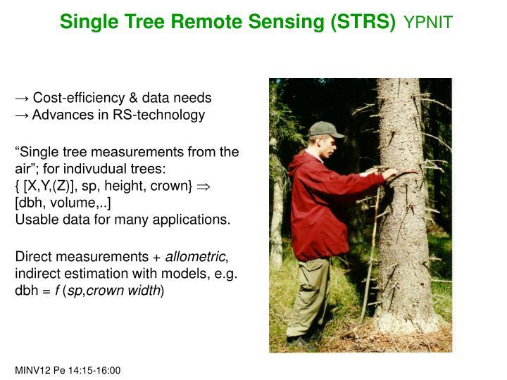 Single Tree Remote Sensing (STRS)
