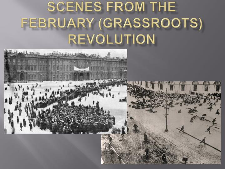 Scenes From the February (grassroots) Revolution
