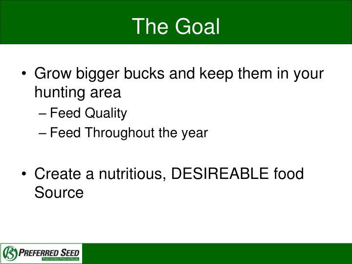 The Goal