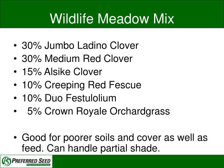Wildlife Meadow Mix